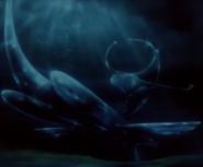 Ishmel Underwater