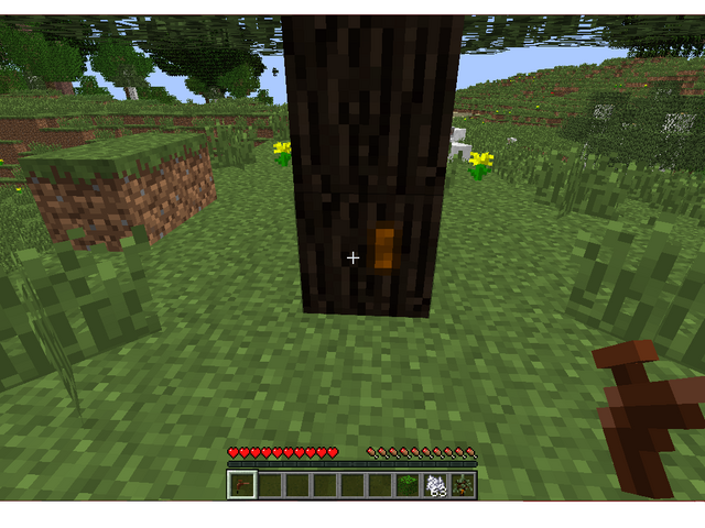 File:Sticky resin on tree.png