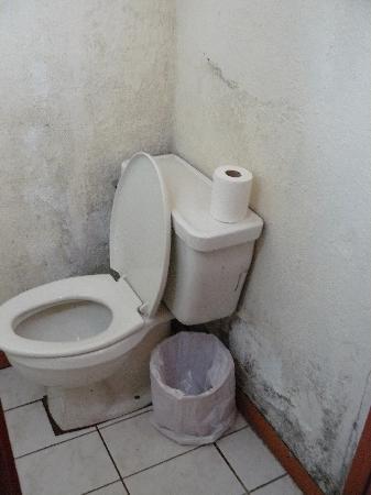 File:Gross-bathroom.jpg