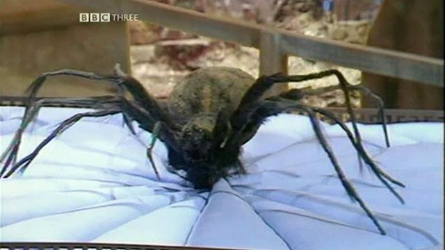 File:Planet of the Spiders.jpg