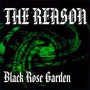 THE REASON (DDR2013)