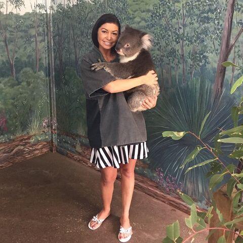 File:Kira koala 2015-03-17.jpg