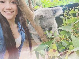 Kamryn koala Australia 1May2015