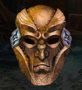 Gfs-automaton-head
