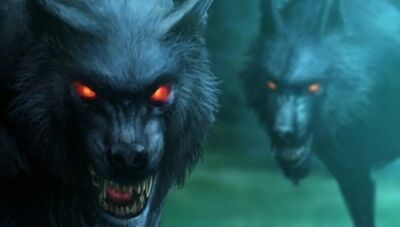 Mist wolves 2