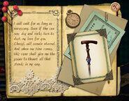 Blaise diary cane