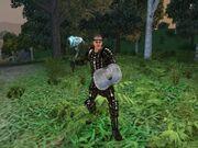 Hibernia-Warden2