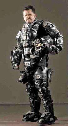 Bear armour