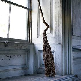File:Witch broom.jpg