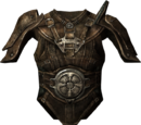 Shivering Isles Leather Armour