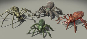 GiantSpiders