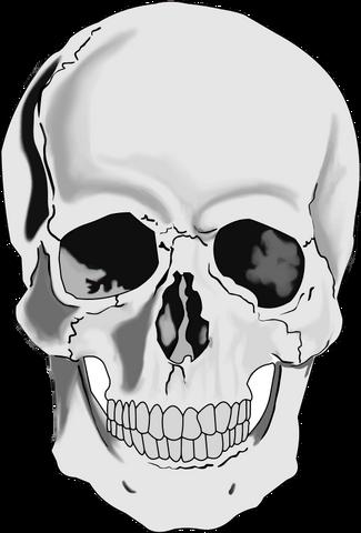 File:Skull4.png