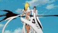 Aizen kills Halibel