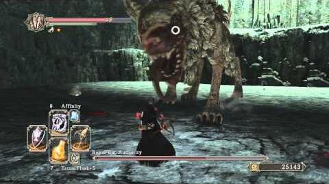 Dark Souls 2 Royal Rat Authority Boss TRICKS & TIPS For Easy Kill