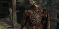 Hollow Soldier (Dark Souls II)