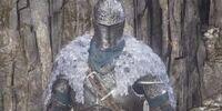 Faraam Set (Dark Souls III)