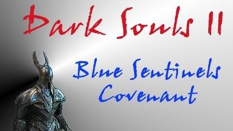 Dark Souls II - Blue Sentinels Covenant