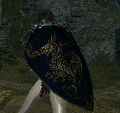 File:Dragon shield.jpg