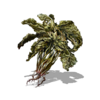 Green Blossom (DSIII)
