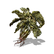 Green Blossom (DSIII).png