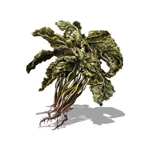 File:Green Blossom (DSIII).png