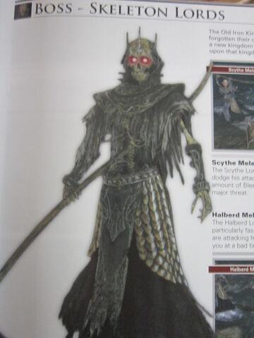 File:Skeleton Lord.jpg