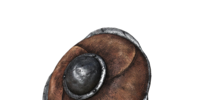 Small Leather Shield (Dark Souls III)