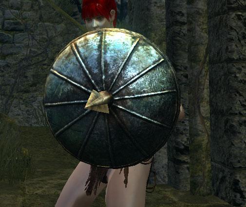 File:Pierce shield.jpg