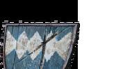 Blue Wooden Shield