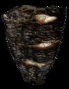 Burned Fish Fillet