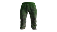 Green Tracksuit Pants Model (D-BD)