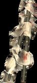Wooden Splint