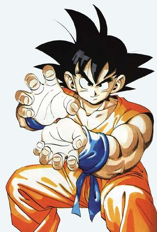 File:Goku-Hame-Kame-Pijgcture.jpg
