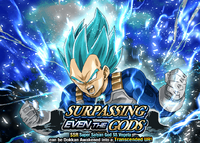 Quest top banner 524