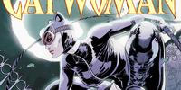 Catwoman (EM's DCEU)