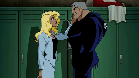 File:Black Canary and Wildcat.png