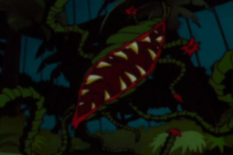 File:Venus Fly Trap.png