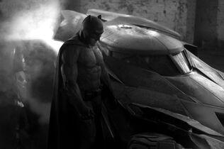 File:First bat pic.jpg