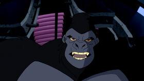 Gorilla Grodd (Justice League Unlimited)