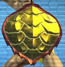 ShieldTurtleShell