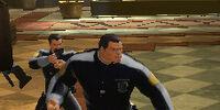 Security Guard (WayneTech)