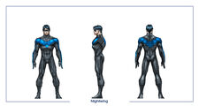 Nightwing body