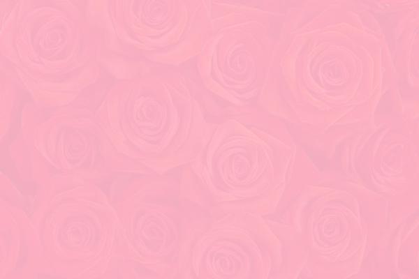 File:Roses11.jpg