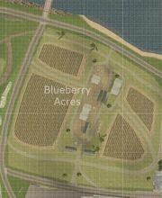 Blueberry Acres