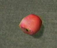 File:Dead rising apple.jpg
