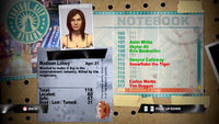 Dead Rising madison notebook