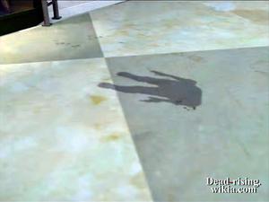 Dead rising bug shadow