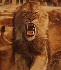 File:Lion-sm.jpg