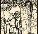 Diarmuid Ua Duibhne (Mythology)