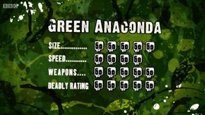 S3 DR green anaconda